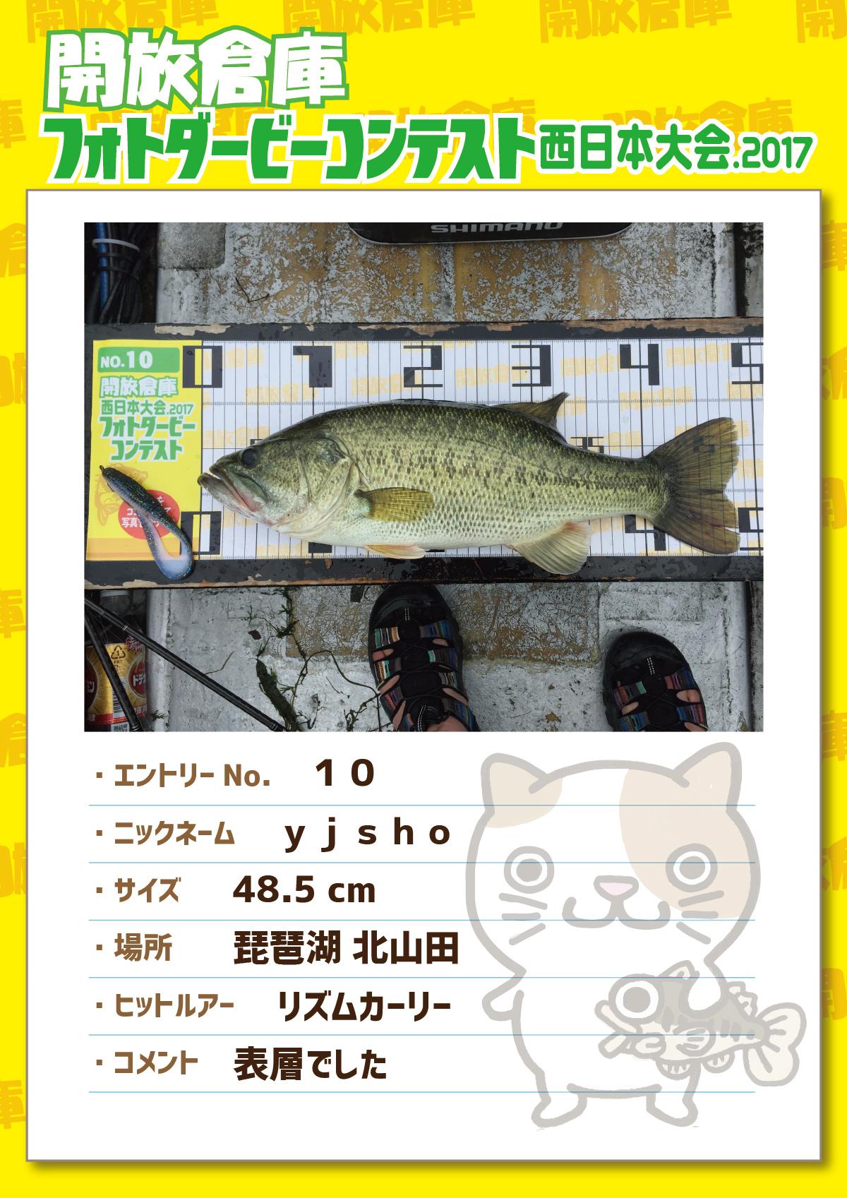 No.10 yjsho 48.5cm 琵琶湖北山田 リズムカーリー 表層でした