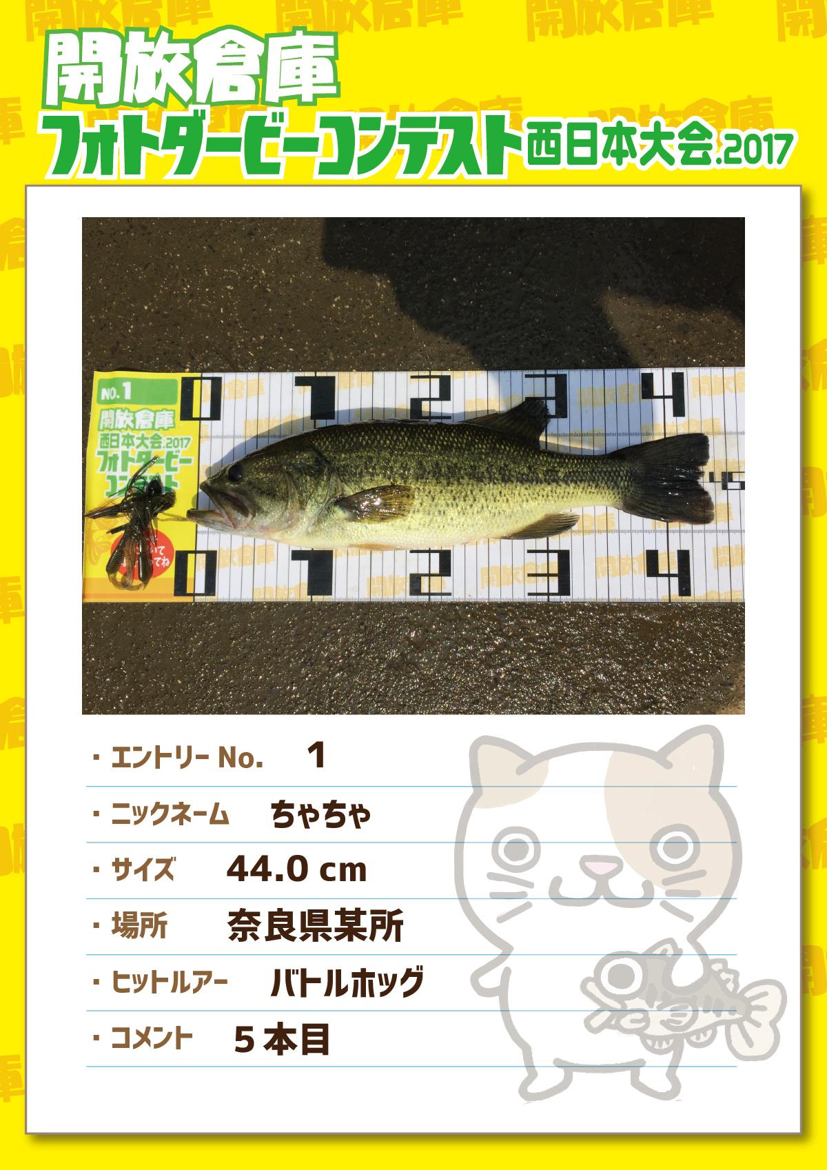 No.1 ちゃちゃ 44.0cm 奈良県某所 バトルホッグ 5本目