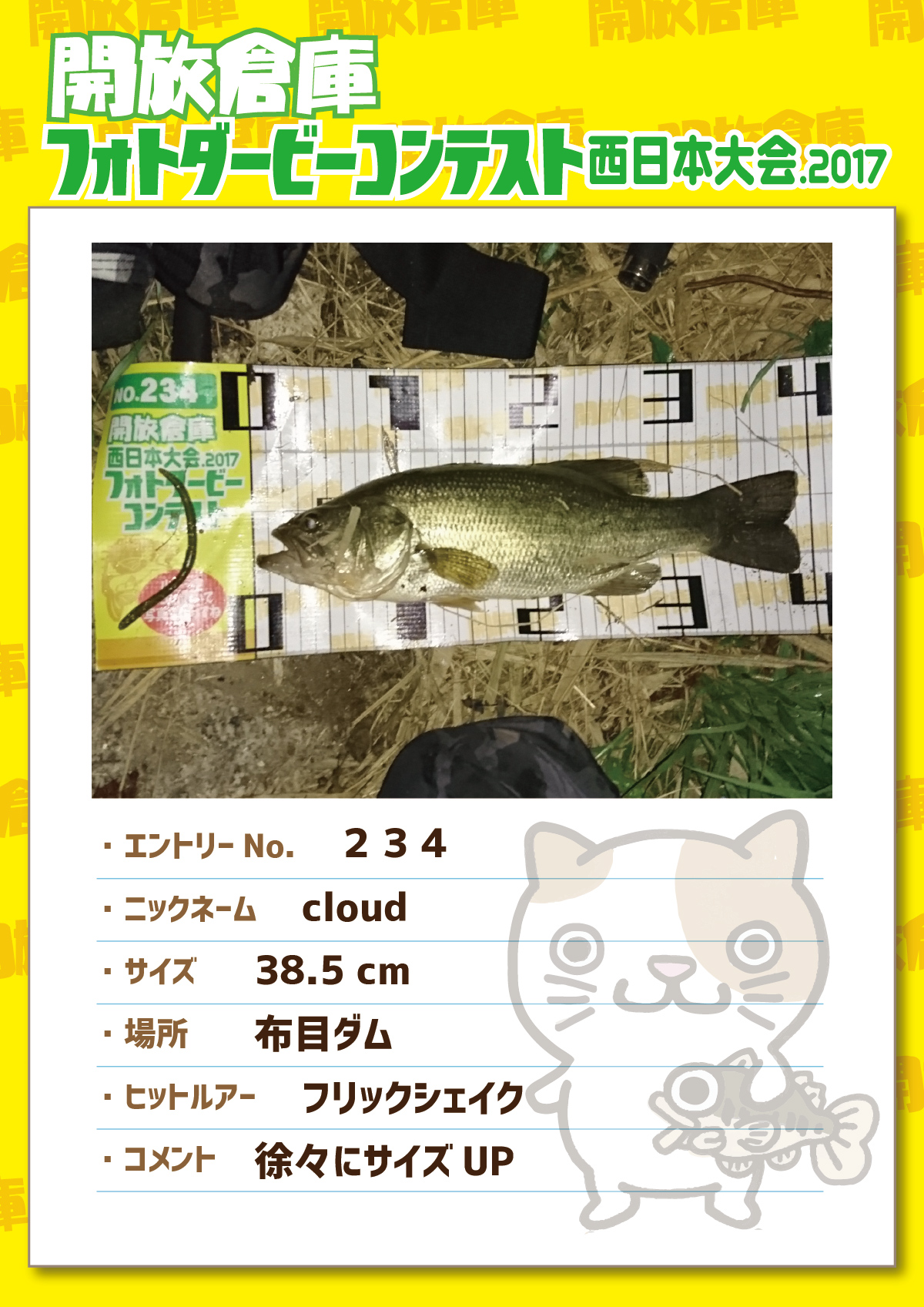 No.234 cloud 38.5cm 布目ダム フリックシェイク 徐々にサイズUP