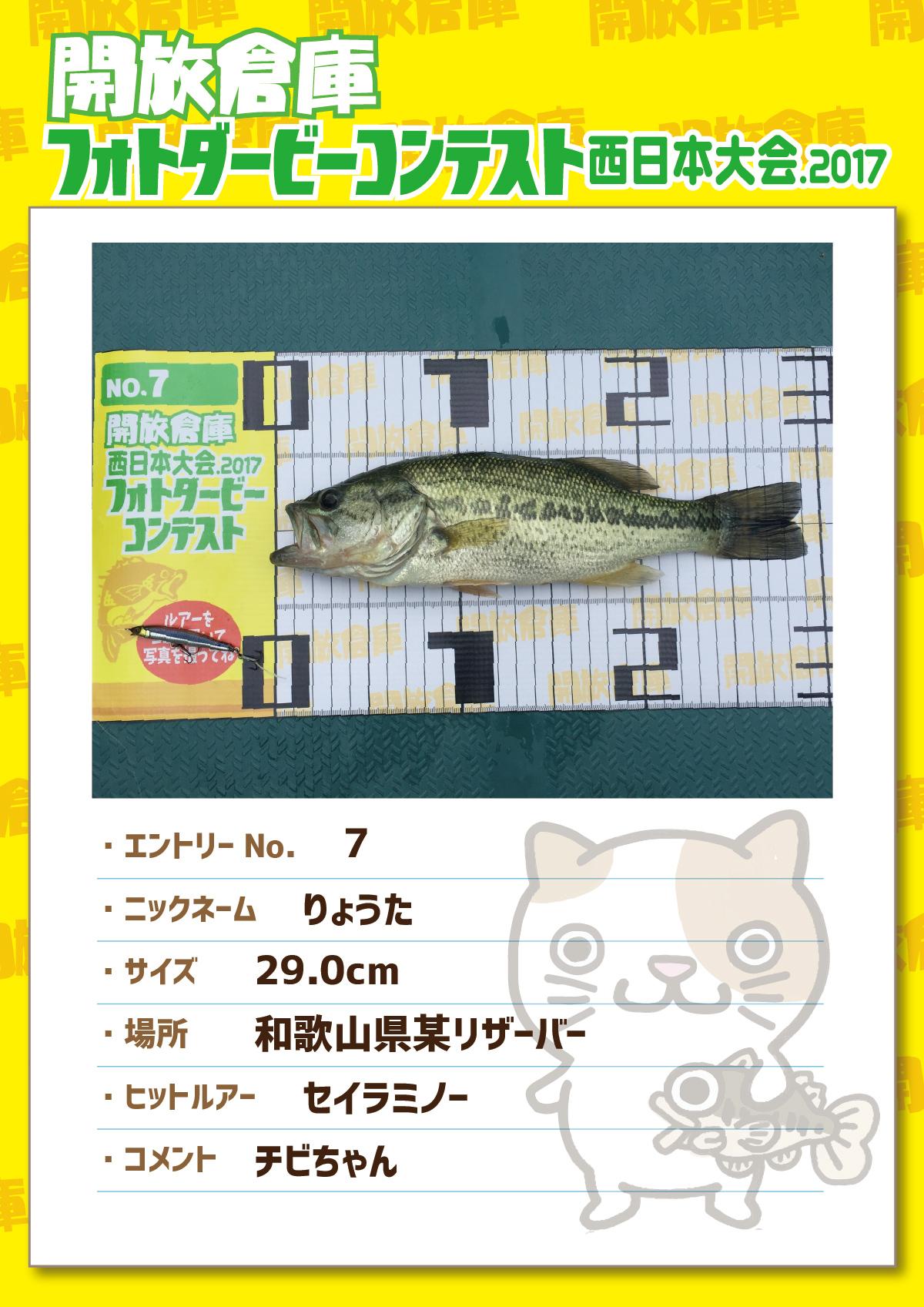 No.7 りょうた 29.0cm 和歌山県リザーバー セイラミノー チビちゃん