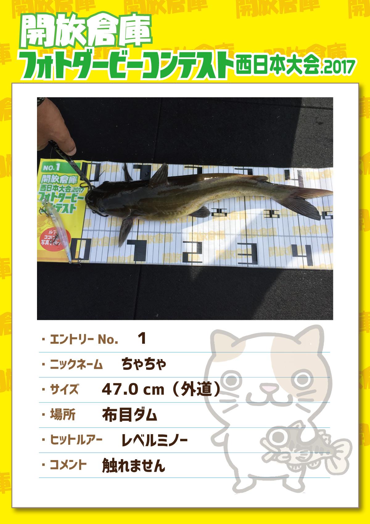 No.1 ちゃちゃ 47.0cm(外道) 布目ダム レベルミノー 触れません
