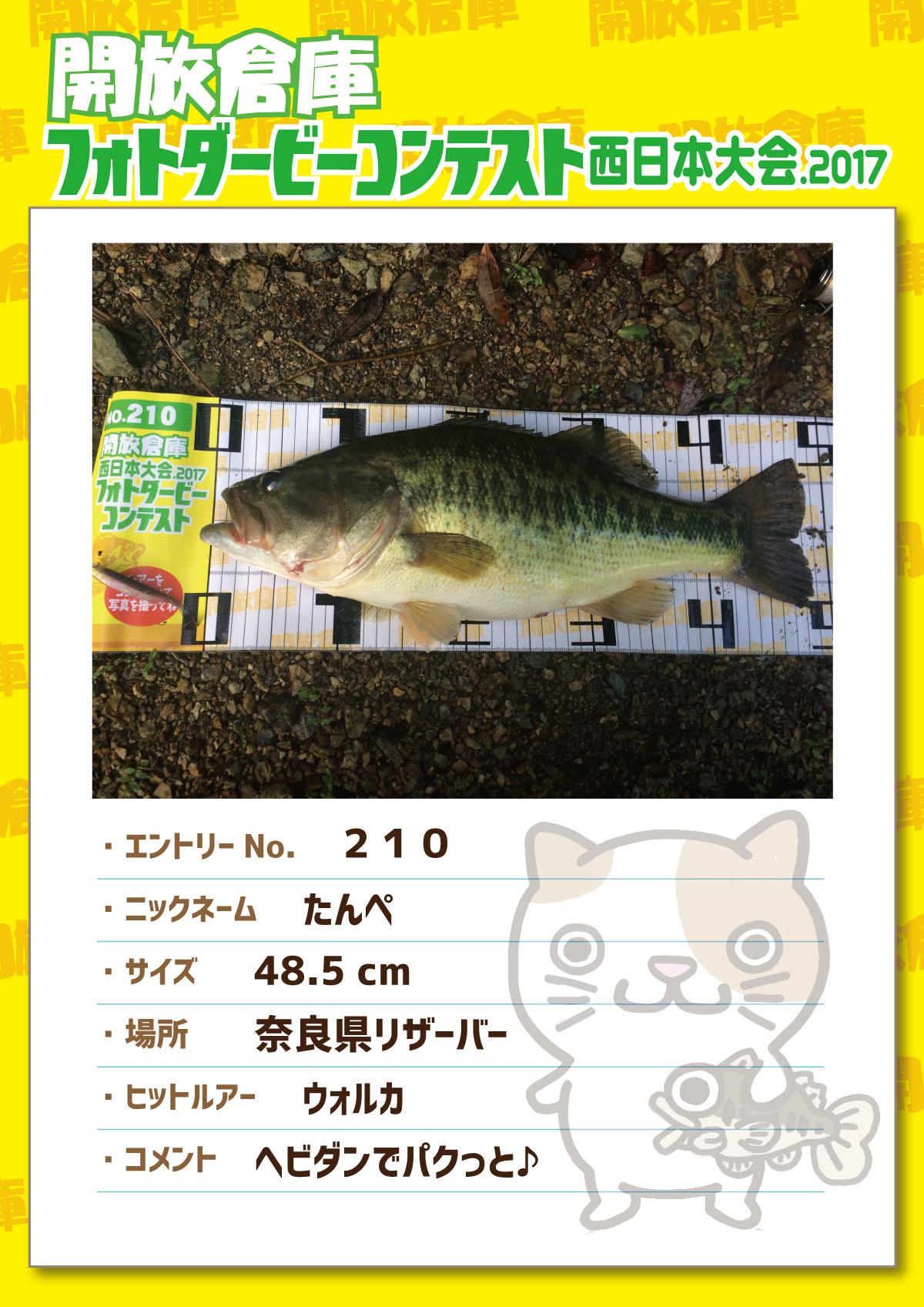 No.210 たんぺ 48.5cm 奈良県リザーバー ウォルカ ヘビダンでパクっと♪