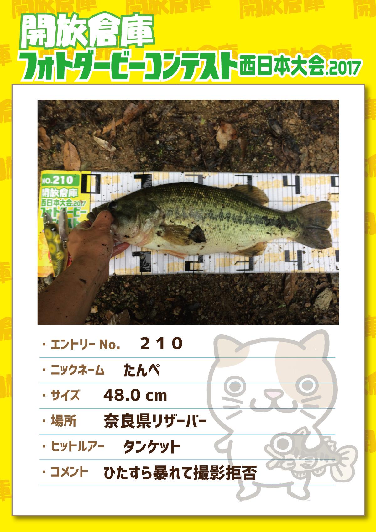 No.210 たんぺ 48.0cm 奈良県リザーバー タンケット ひたすら暴れて撮影拒否