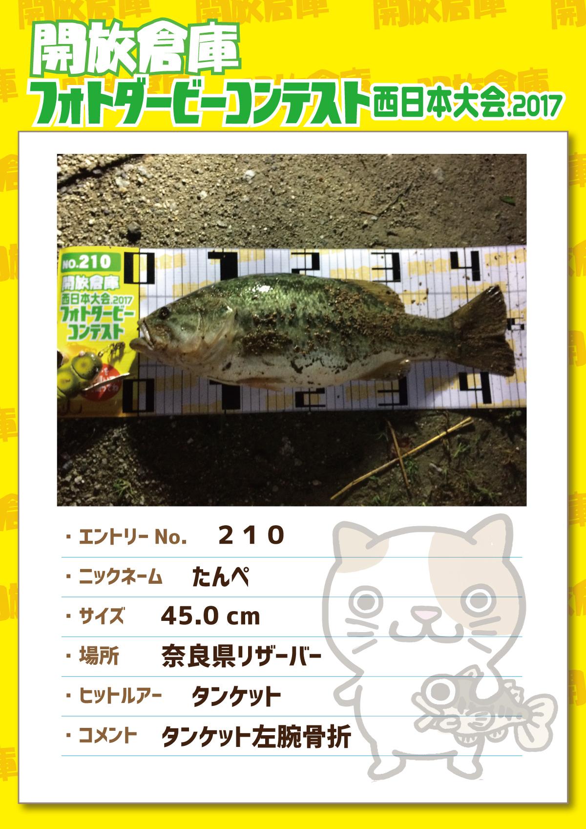 No.210 たんぺ 45.0cm 奈良県リザーバー タンケット タンケット左腕骨折