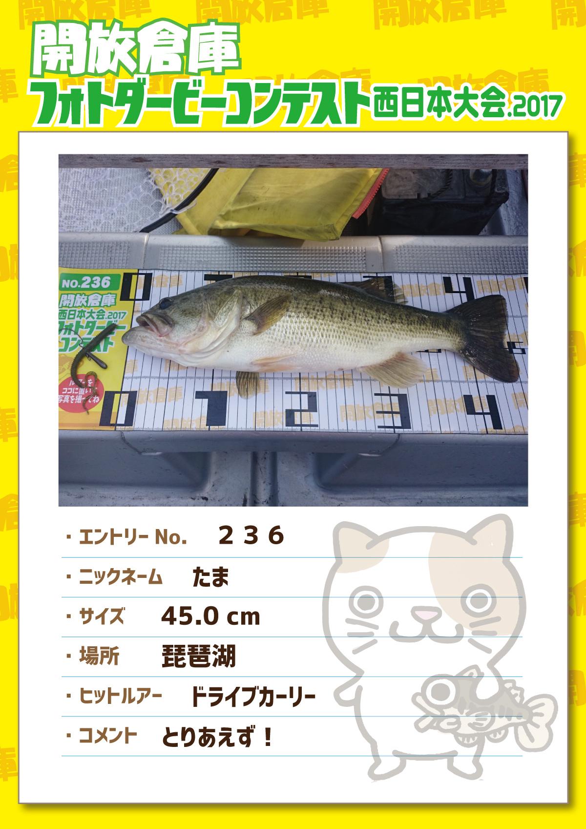 No.236 たま 45.0cm 琵琶湖 ドライブカーリー とりあえず!
