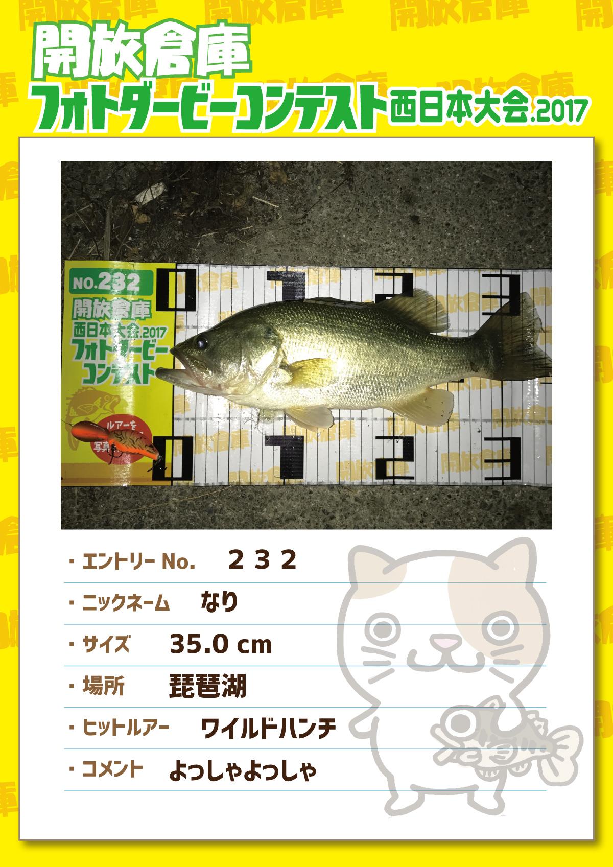 No.232 なり 35.0cm 琵琶湖 ワイルドハンチ よっしゃよっしゃ