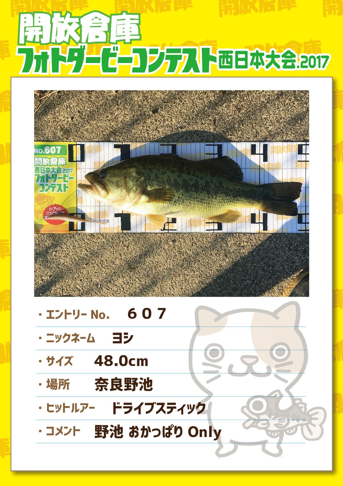 No.607 ヨシ 48.0cm 奈良野池 ドライブスティック 野池おかっぱ Only