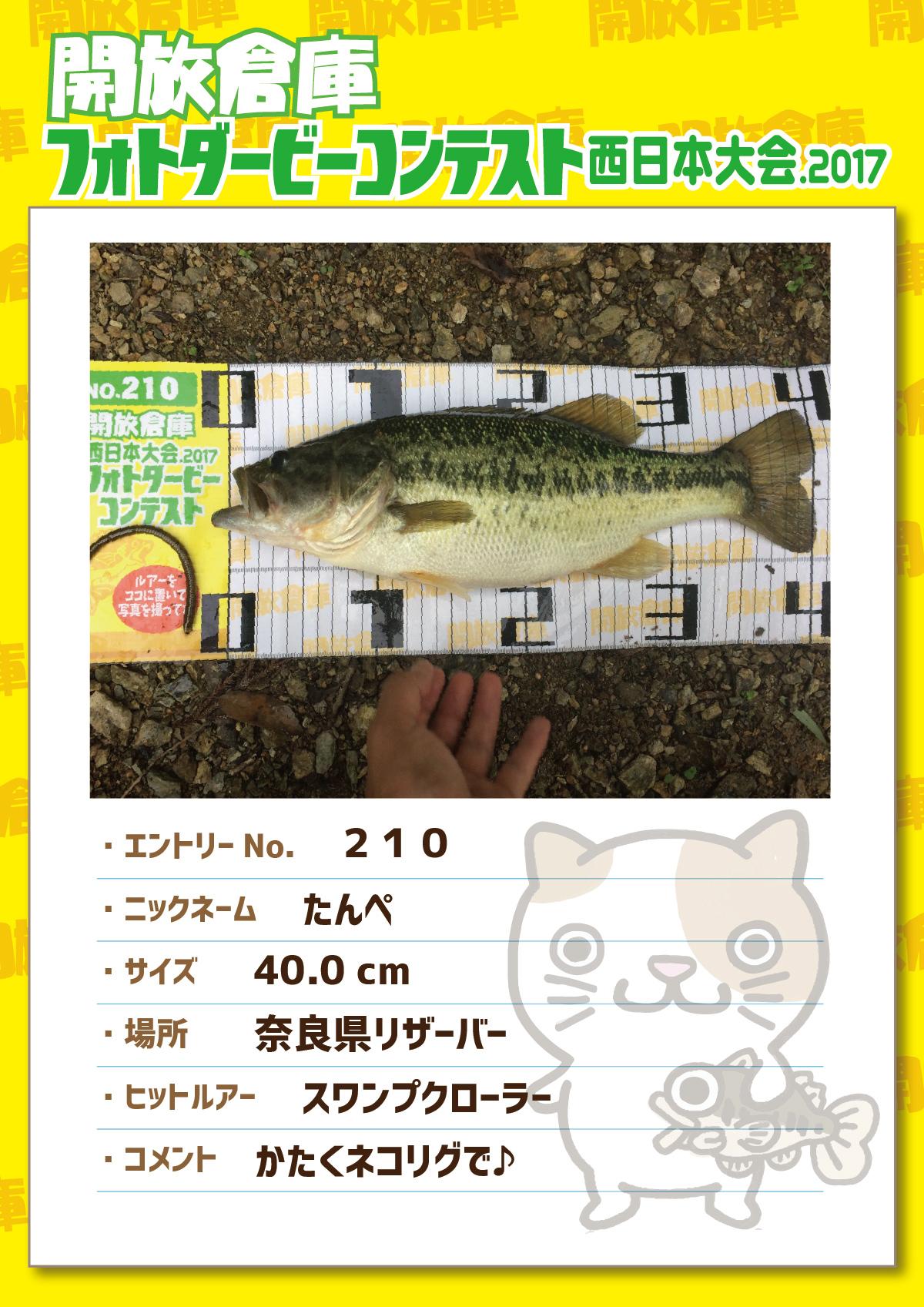 No.210 たんぺ 40.0cm 奈良県リザーバー スワンプクローラー かたくネコリグで♪