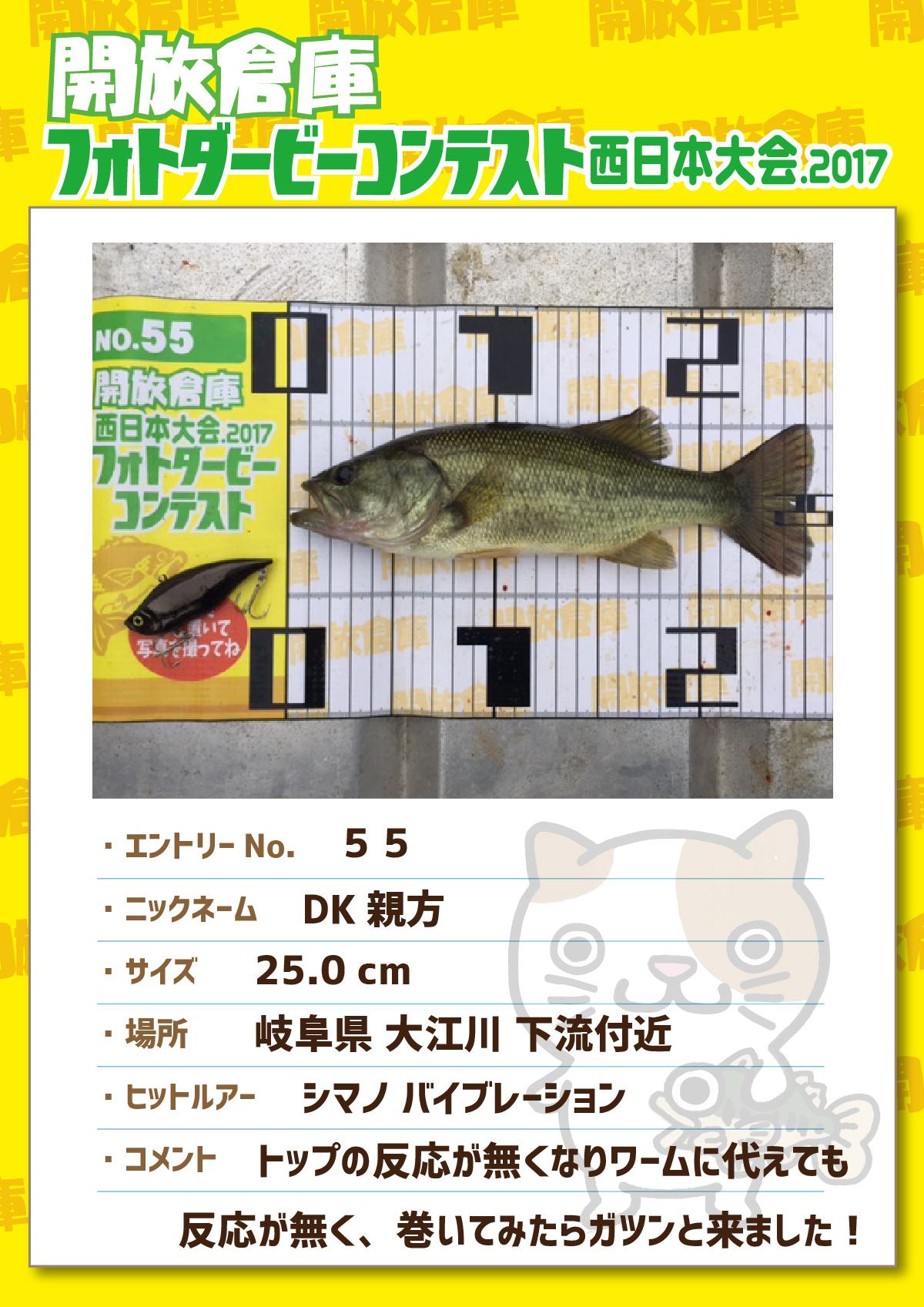 No.055 DK親方 25.0cm 岐阜県大江川下流付近 シマノバイブレーション トップの反応が無くなりワームに代えても反応が無く、巻いてみたらガツンと来ました!