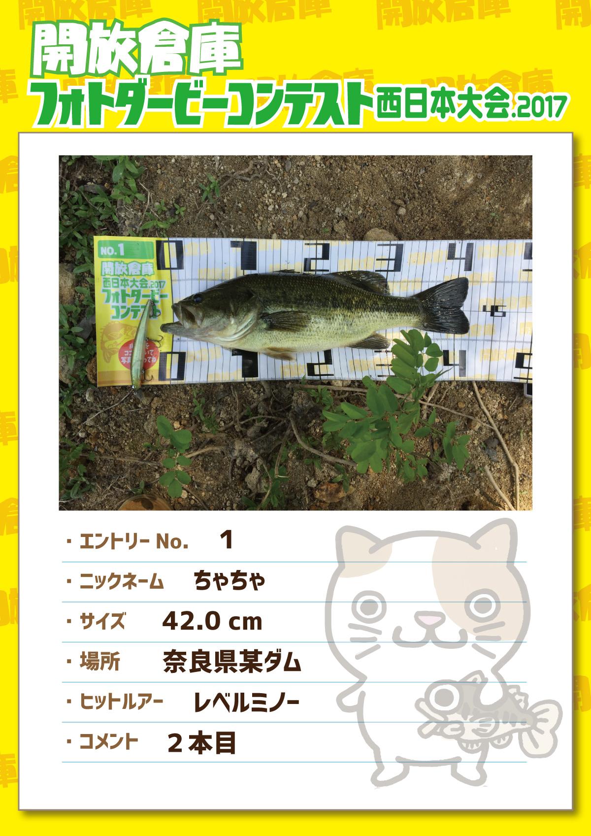No1 ちゃちゃ 42.0cm 奈良県某ダム レベルミノー 2本目