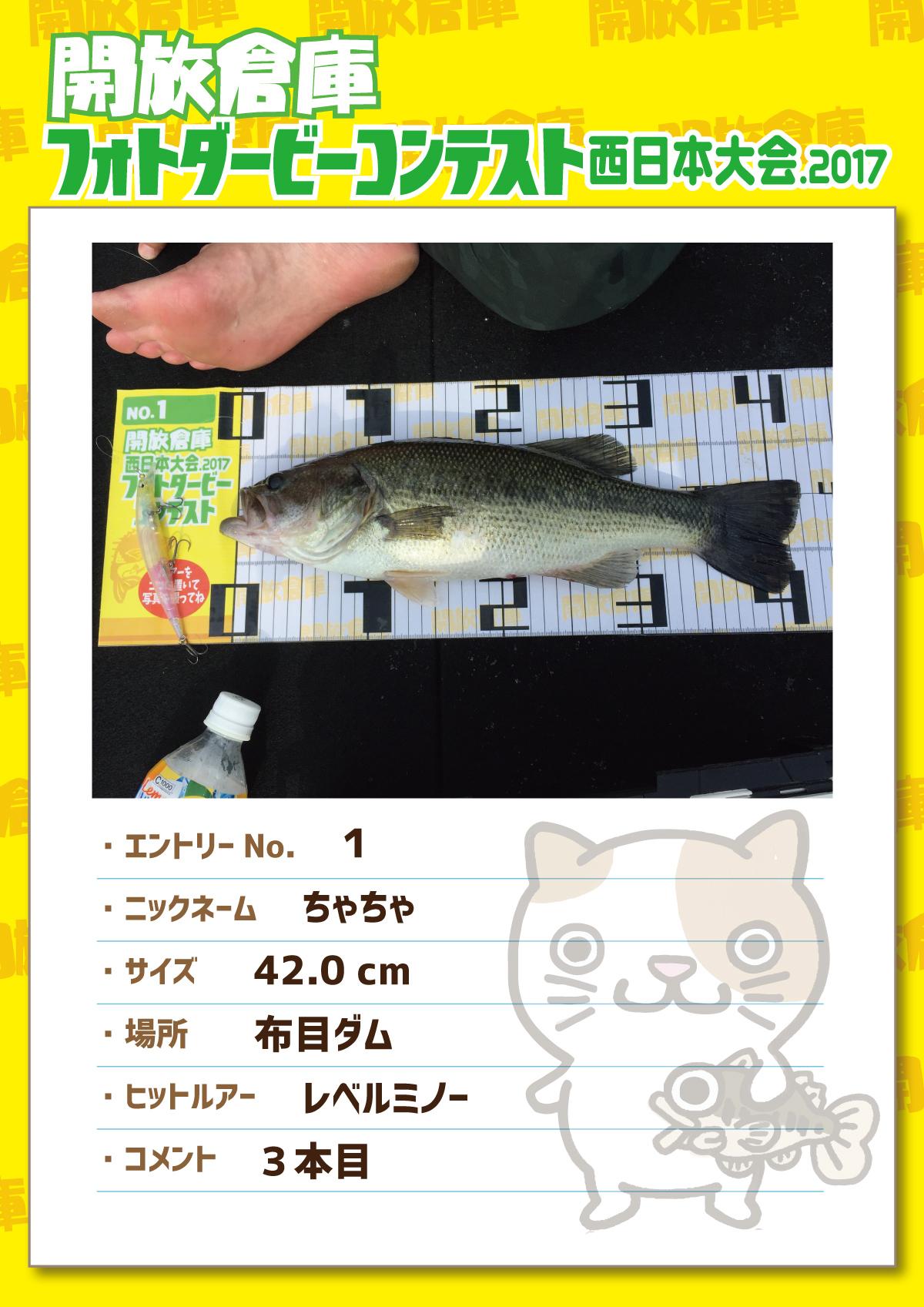 No.1 ちゃちゃ 42.0cm 布目ダム レベルミノー 3本目