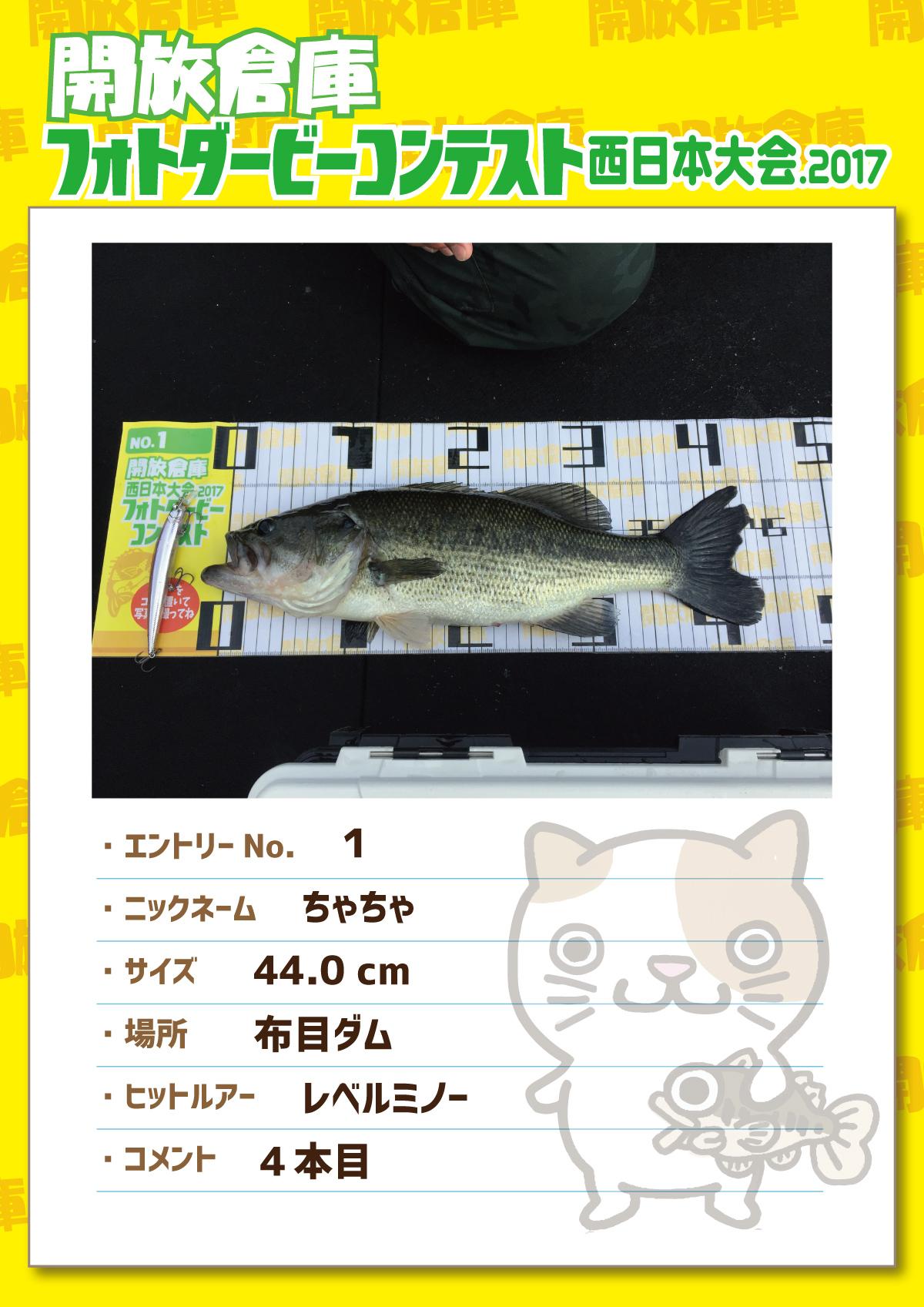 No.1 ちゃちゃ 44.0cm 布目ダム レベルミノー 4本目
