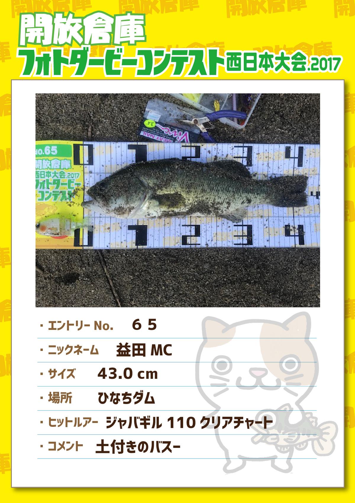 No.065 益田MC 43.0cm ひなちダム ジャバギル110クリアチャート 土付きのバス-