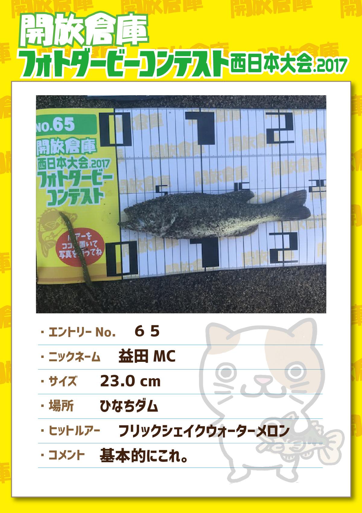 No.065 益田MC 23.0cm ひなちダム フリックシェイクウォーターメロン 基本的にこれ。