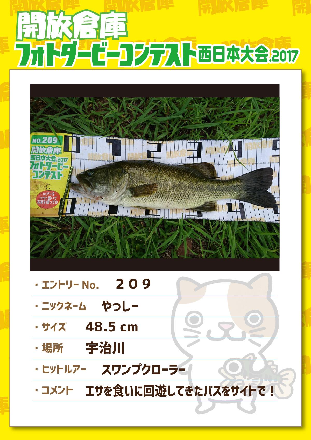 No.209 やっしー 48.5cm 宇治川 スワンプクローラー エサを食いに回遊してきたバスをサイトで!