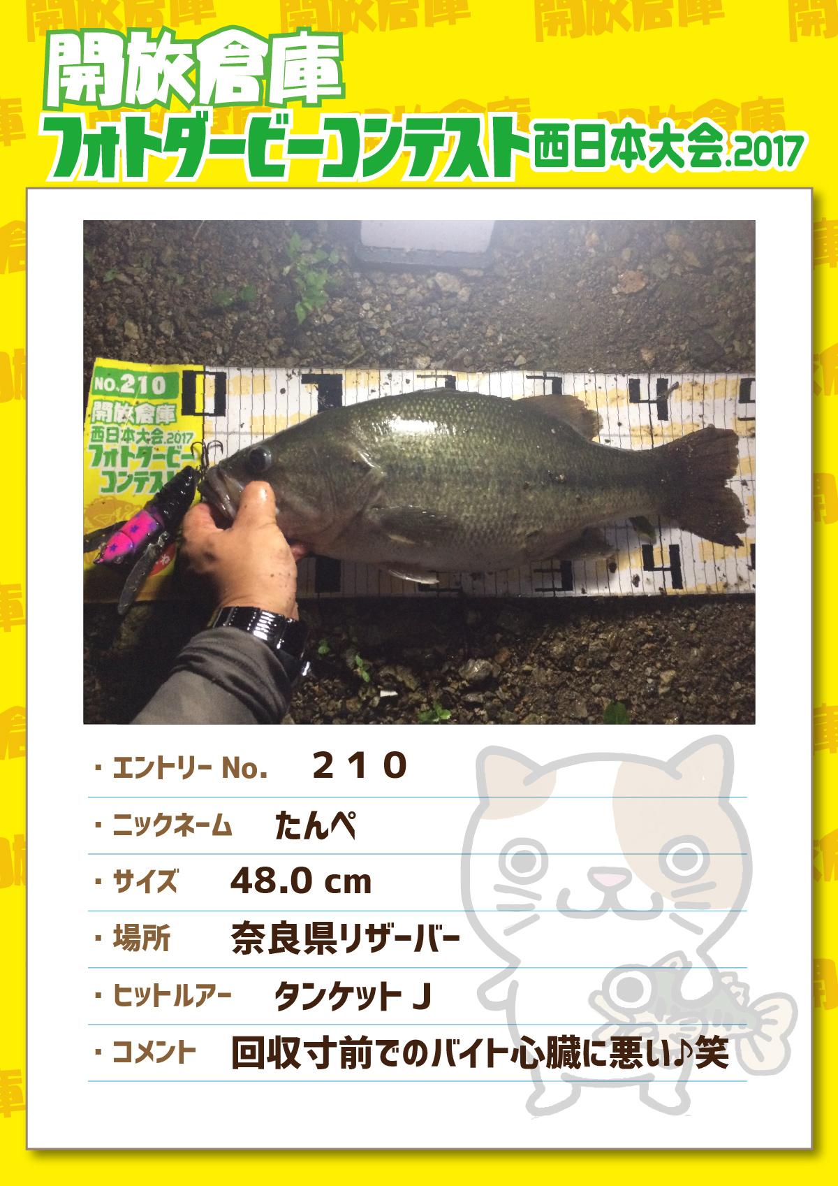 No.210 たんぺ 48.0cm 奈良県リザーバー タンケットJ 回収寸前でのバイト心臓に悪い♪笑