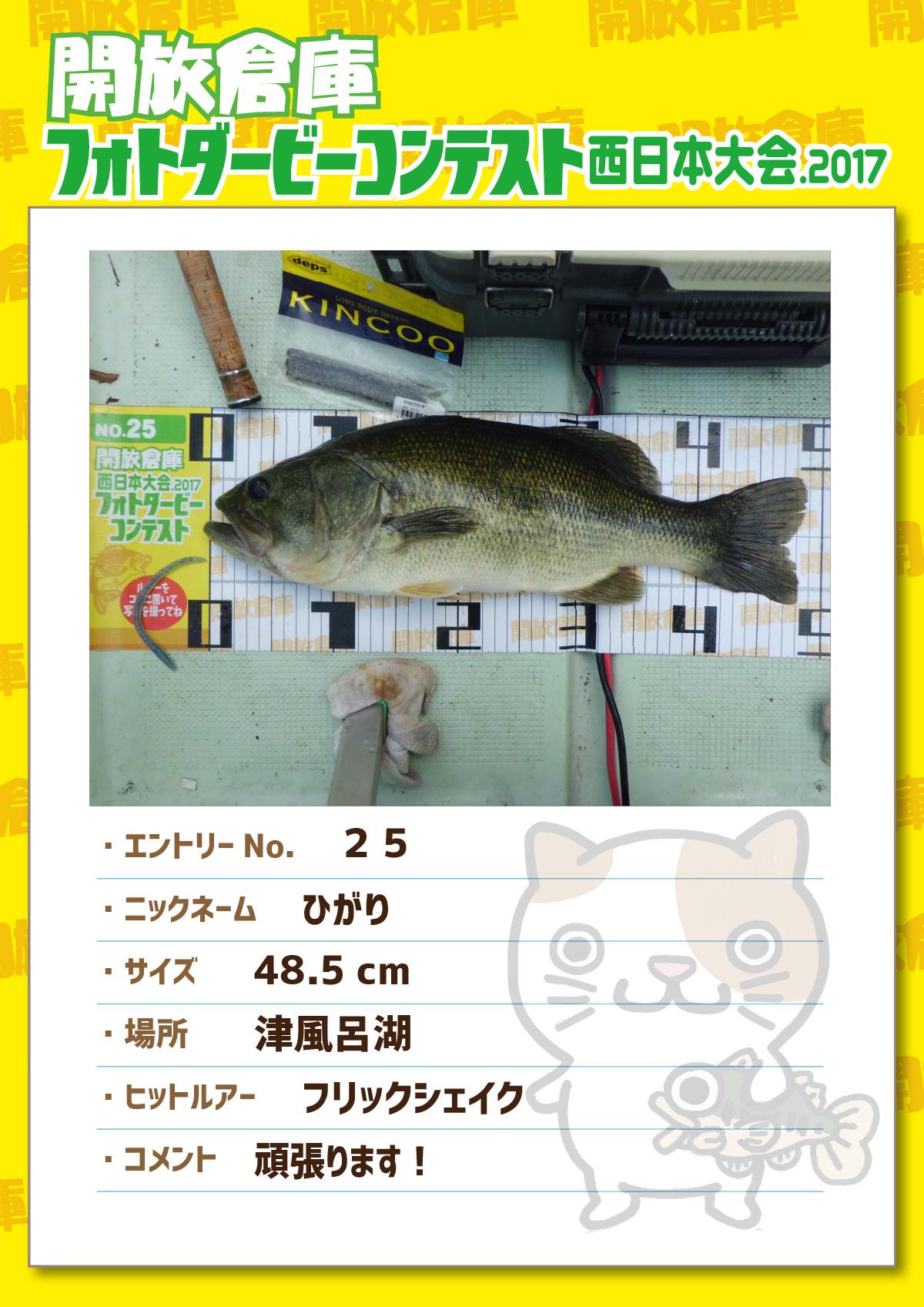 No.025 ひがり 48.5cm 津風呂湖 フリックシェイク 頑張ります!