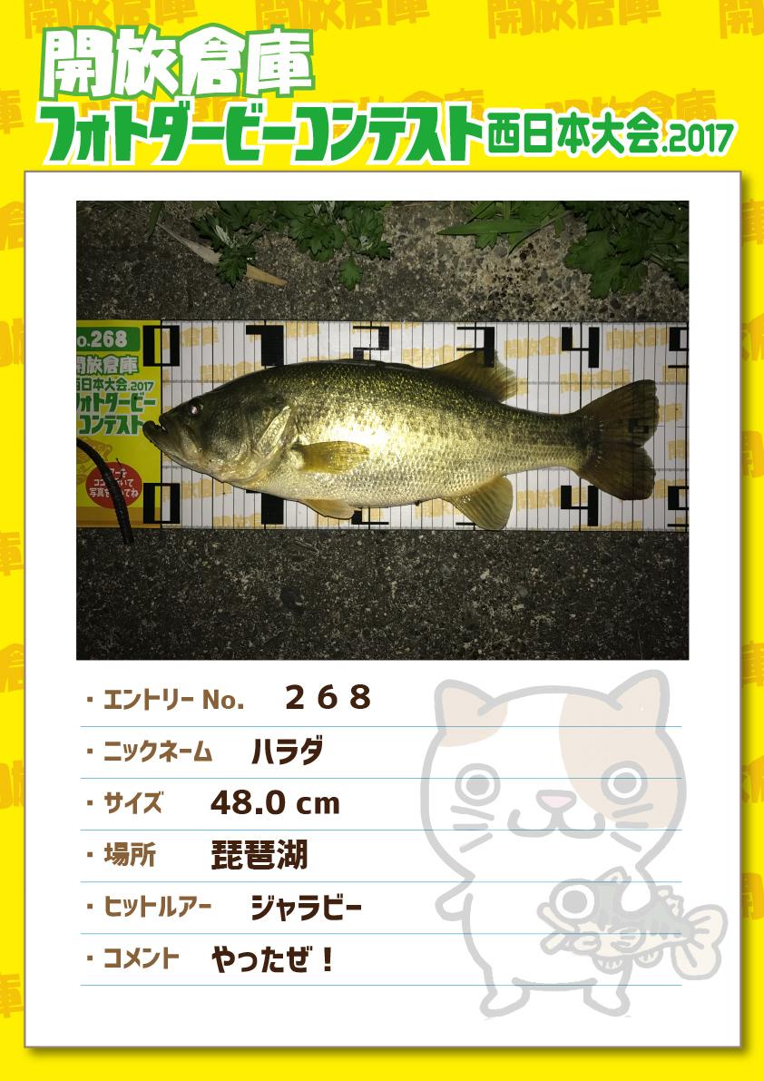 No.268 ハラダ 48.0cm 琵琶湖 ジャラビー やったぜ!