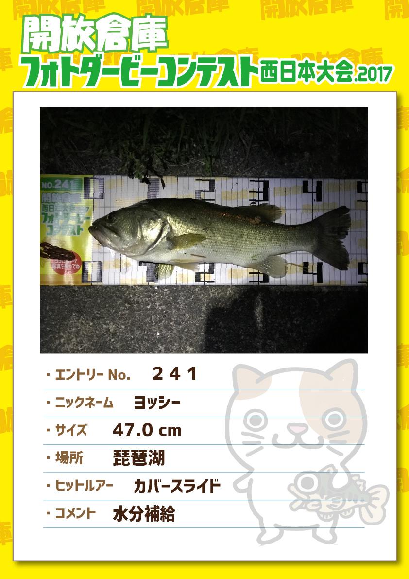 No.241 ヨッシー 47.0cm 琵琶湖 カバースライド 水分補給