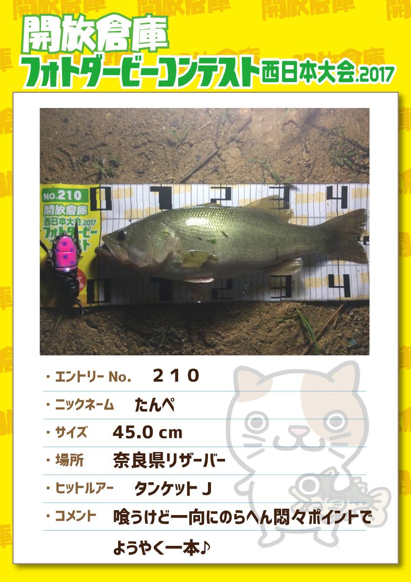 No.210 たんぺ 45.0cm 奈良県リザーバー タンケットJ 喰うけど一向にのらへん悶々ポイントでようやく一本♪
