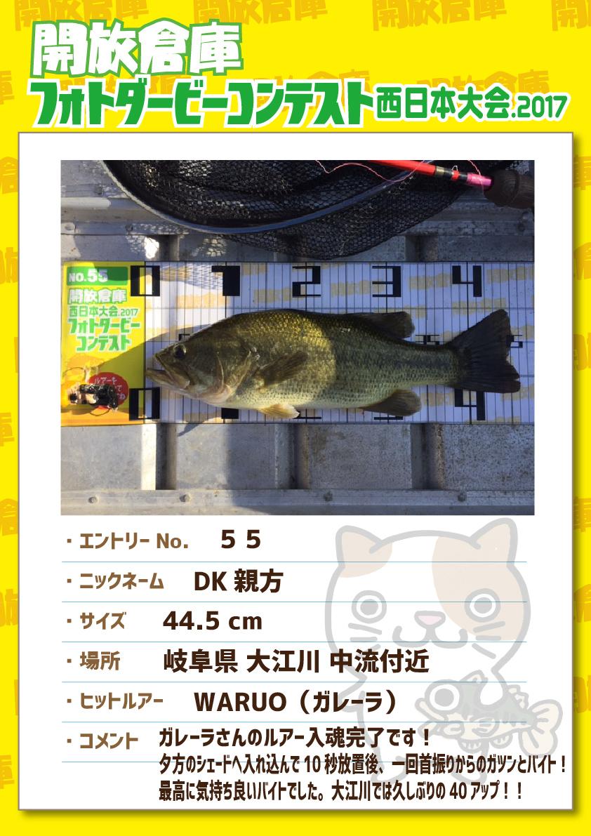 No.055 DK親方 44.5cm 岐阜県大江川中流付近 WARUO(ガレーラ) ガレーラさんのルアー入魂完了です!