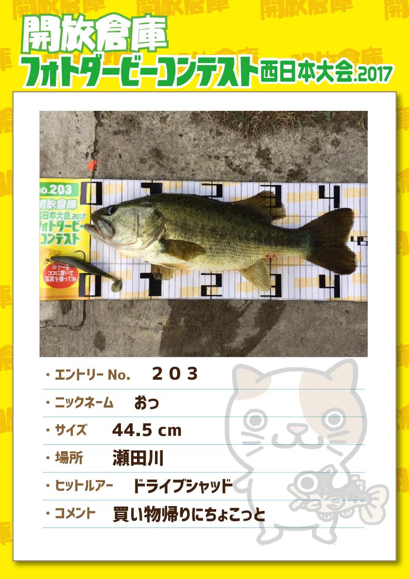 No.203 おっ 44.5cm 瀬田川 ドライブシャッド 買い物帰りにちょこっと