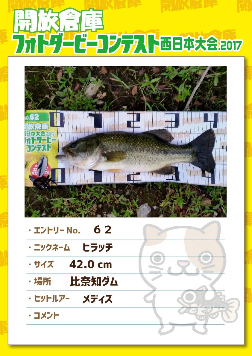 No.062 ヒラッチ 42.0cm 比奈知ダム メディス