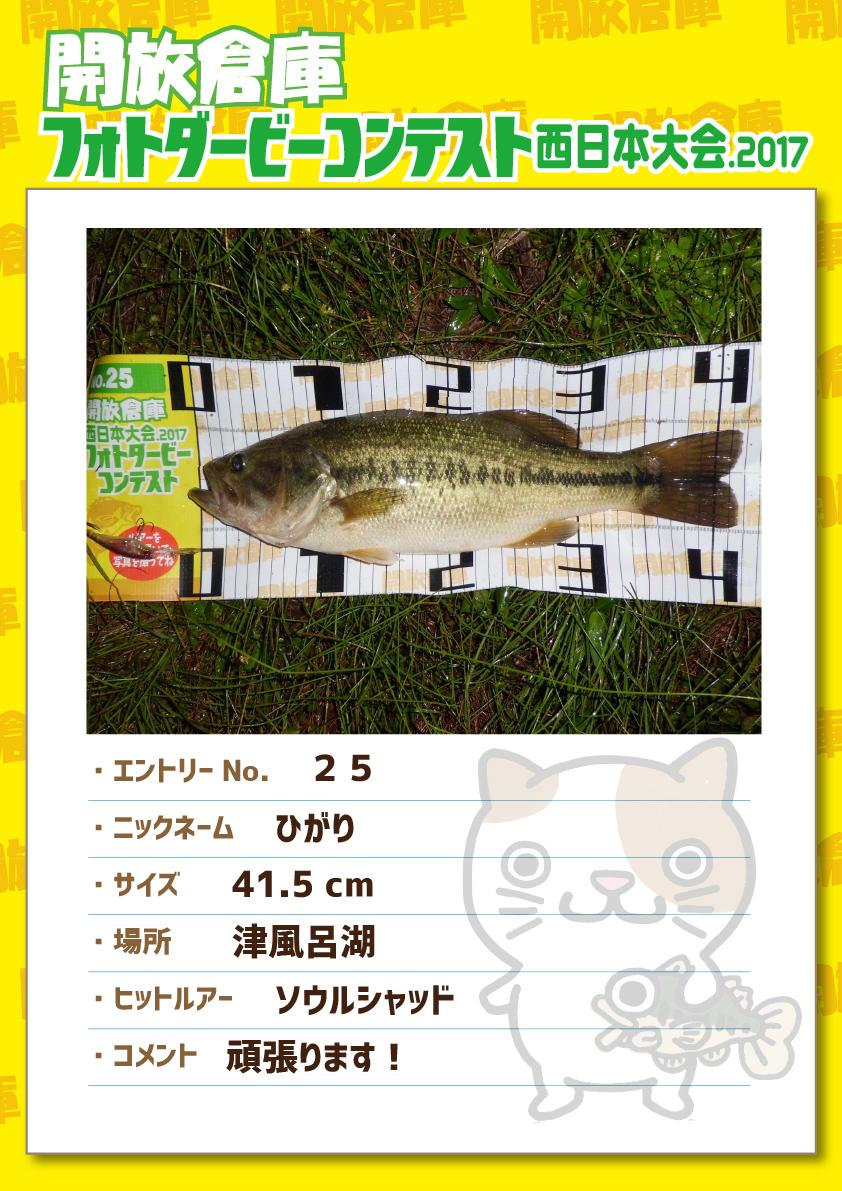 No.025 ひがり 41.5cm 津風呂湖 ソウルシャッド 頑張ります!