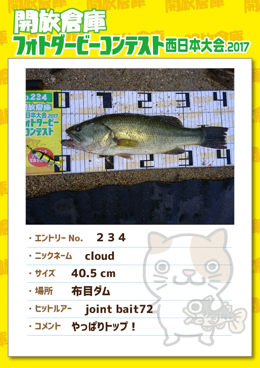 No.234 cloud 40.5cm 布目ダム jointbaite72 やっぱりトップ!