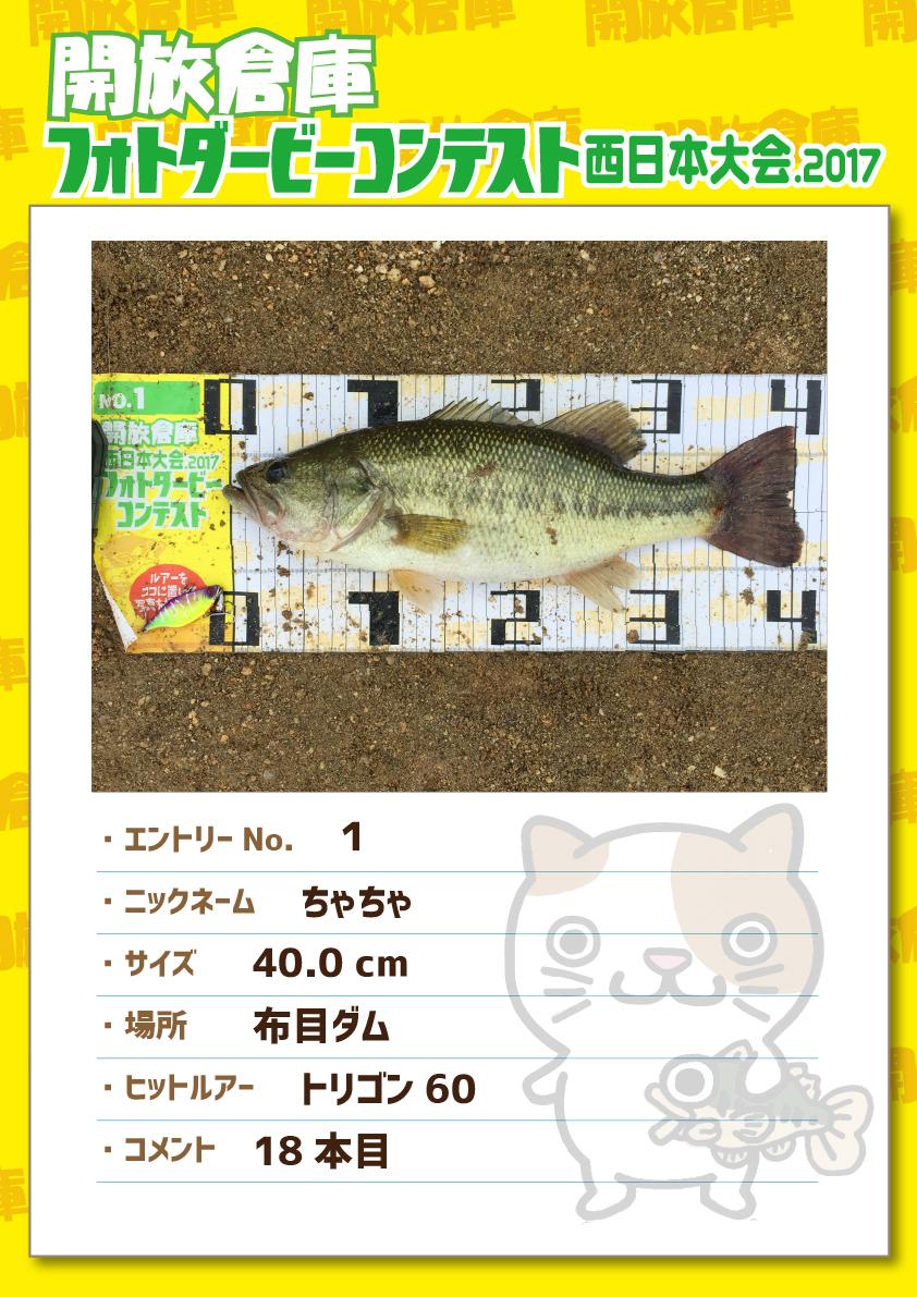 No.001 ちゃちゃ 40.0cm 布目ダム トリゴン60 18本目