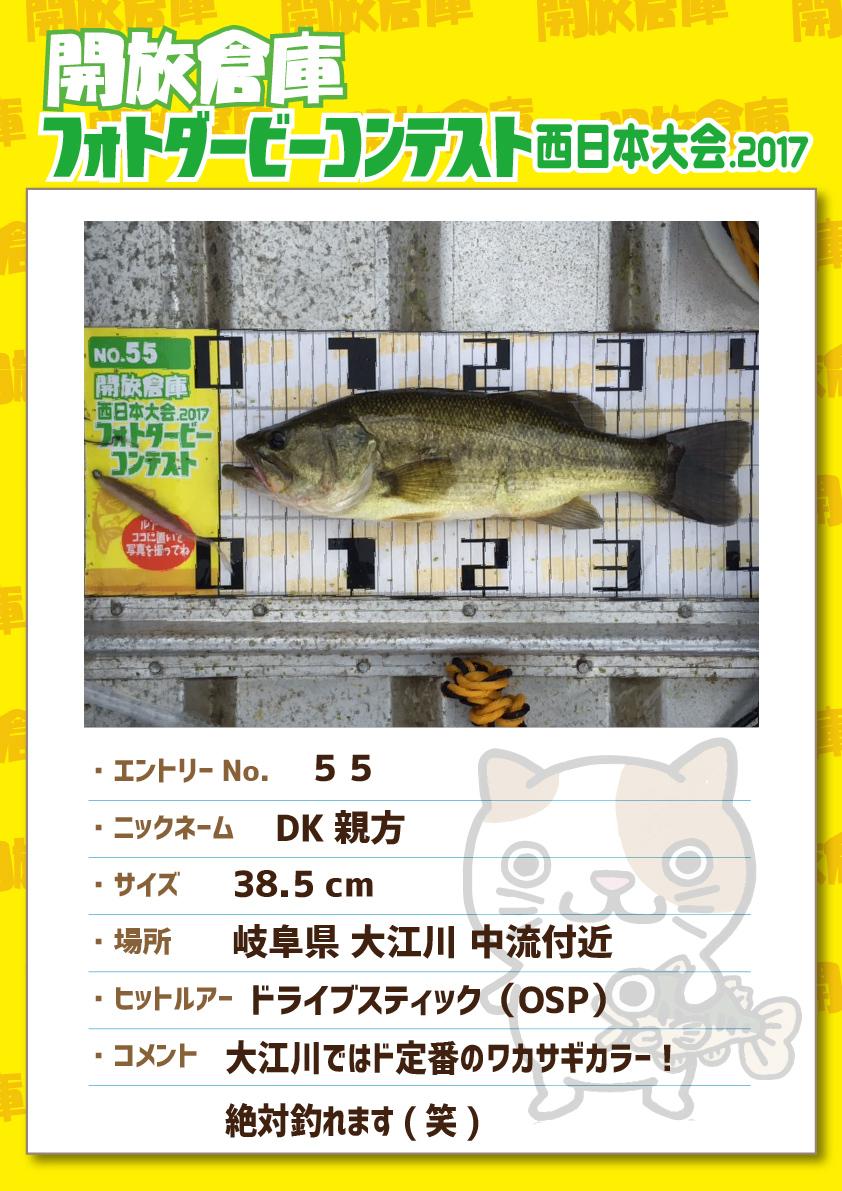 No.055 DK親方 38.5cm 岐阜県大江川中流付近 ドライブスティック(OSP) 大江川ではド定番のワカサギカラー!絶対釣れます(笑)