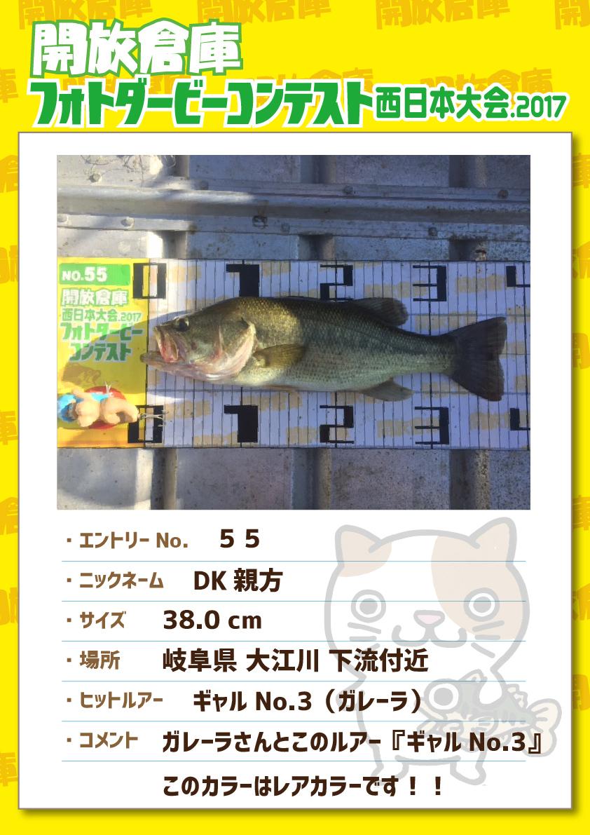 No.055 DK親方 38.0cm 岐阜県大江川下流付近 ギャルNo.3(ガレーラ) ガレーラさんとこのルアー『ギャルNo.3』このカラーはレアカラーです!!