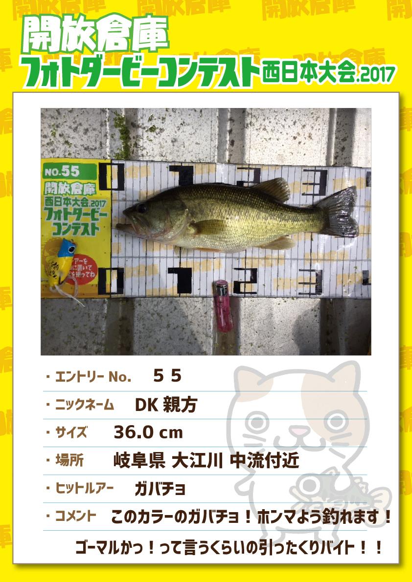 No.055 DK親方 36.0cm 岐阜県大江川中流付近 ガバチョ このカラーのガバチョ!ホンマよう釣れます!ゴーマルかっ!って言うくらいの引ったくりバイト!!