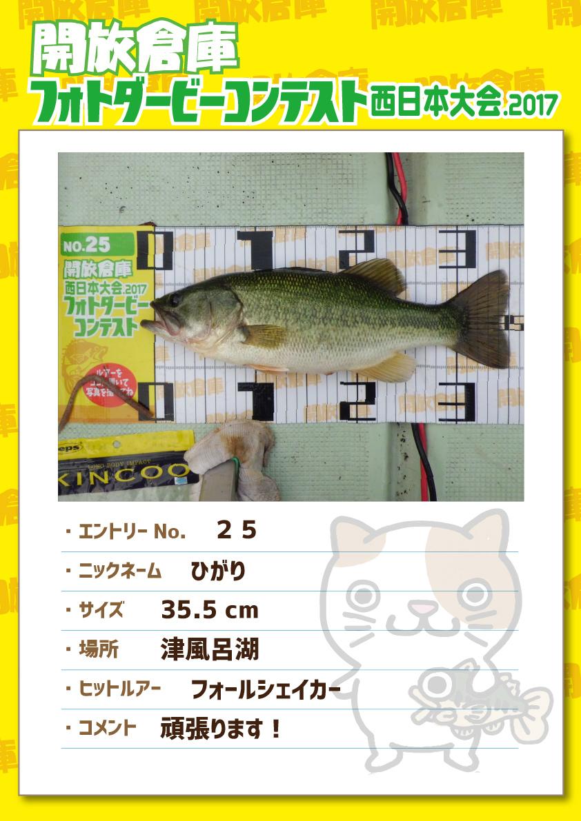 No.025 ひがり 35.5cm 津風呂湖 フォールシェイカー 頑張ります!