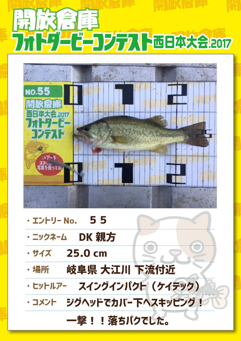No.055 DK親方 25.0cm 岐阜県大江川下流付近 スイングインパクト(ケイテック) ジグヘッドでカバー下へスキッピング!一撃!!落ちパクでした。