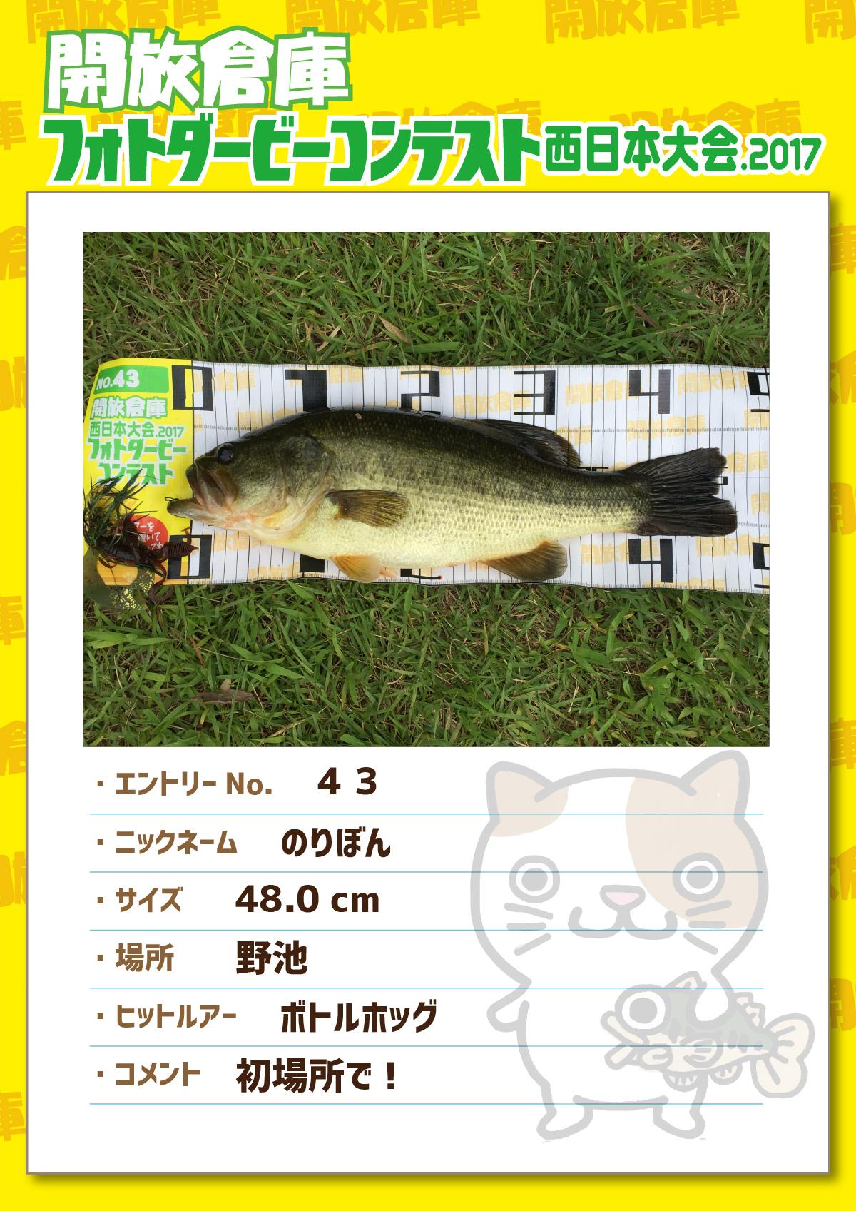 No.043 のりぼん 48.0cm 野池 ボトルホッグ 初場所で!