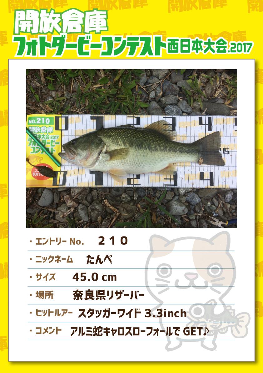 No.210 たんぺ 45.0cm 奈良県リザーバー スタッガーワイド3.3inch アルミ蛇キャロスローフォールでGET♪