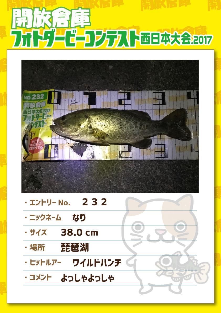 No.232 なり 38.0cm 琵琶湖 ワイルドハンチ よっしゃよっしゃ