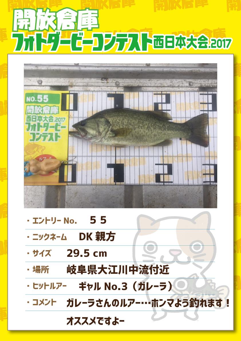 No.055 DK親方 29.5cm 岐阜県大江川中流付近 ギャルNo.3(ガレーラ) ガレーラさんのルアー・・・ホンマよう釣れます!オススメですよー