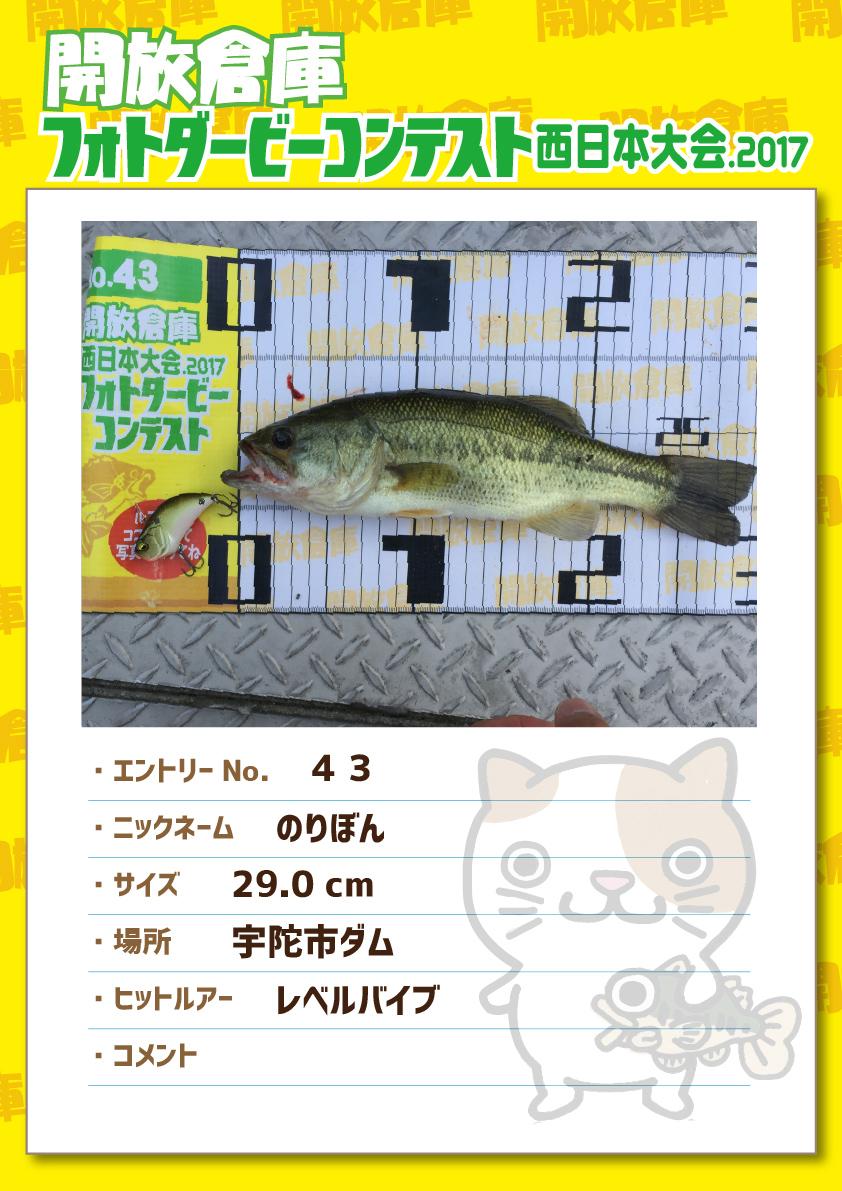 No.043 のりぼん 29.0cm 宇陀市ダム レベルバイブ 無記入
