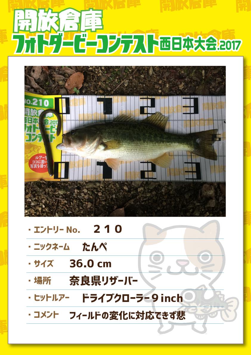 No.210 たんぺ 36.0cm 奈良県リザーバー ドライブクローラー9inch フィールドの変化に対応できず悲