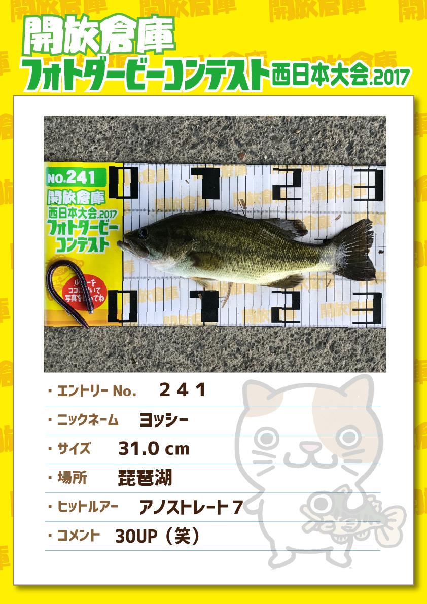 No.241 ヨッシー 31.0cm 琵琶湖 アノストレート7 30UP(笑)