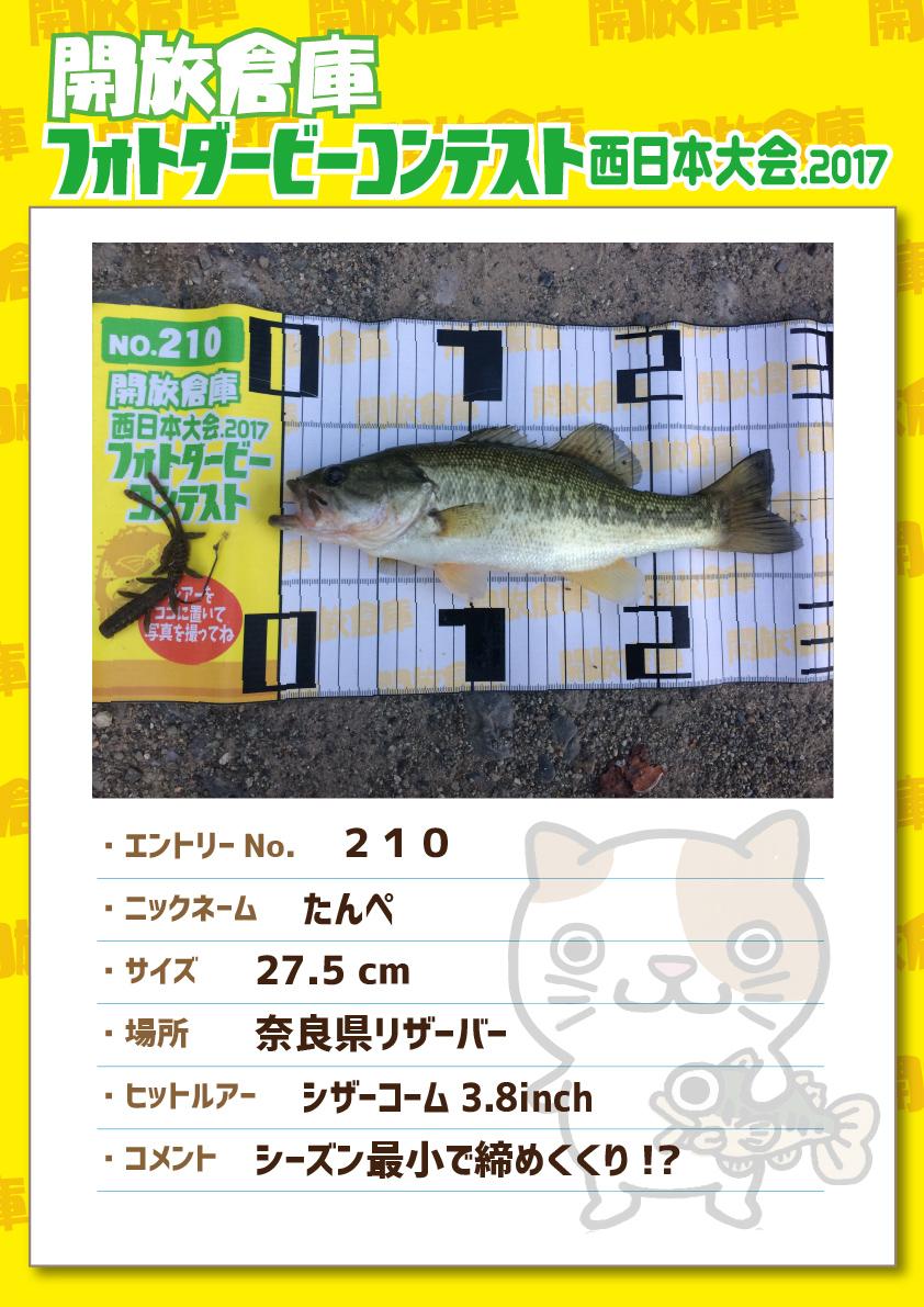 No.210 たんぺ 27.5cm 奈良県リザーバー シザーコーム3.8inch シーズン最小で締めくくり!?