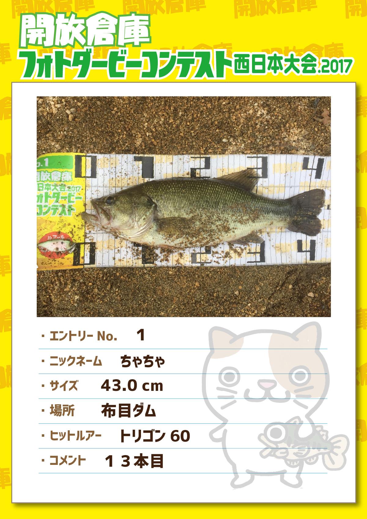 No.001 ちゃちゃ 43.0cm 布目ダム トリゴン60 13本目