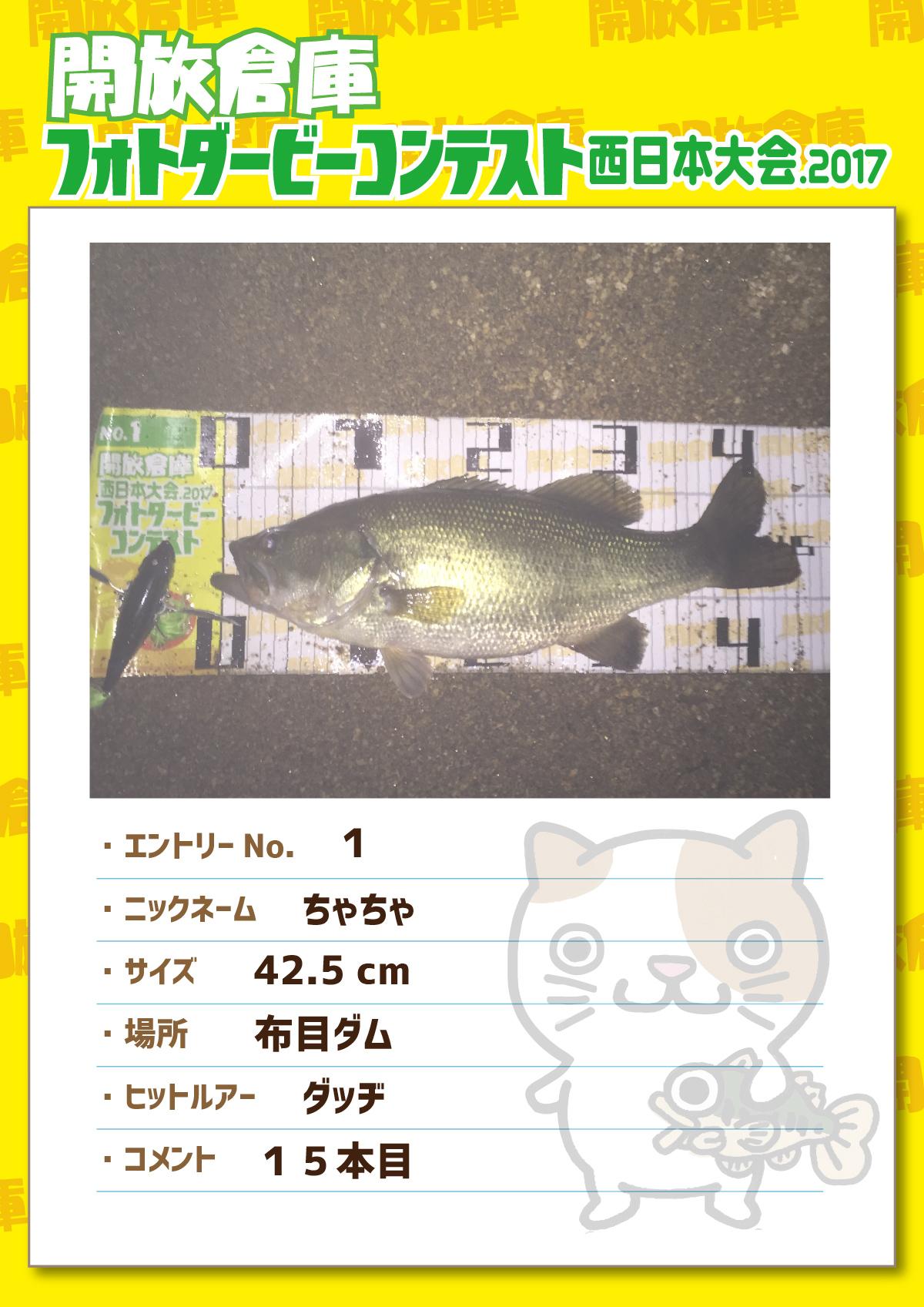No.001 ちゃちゃ 42.5cm 布目ダム ダッヂ 15本目