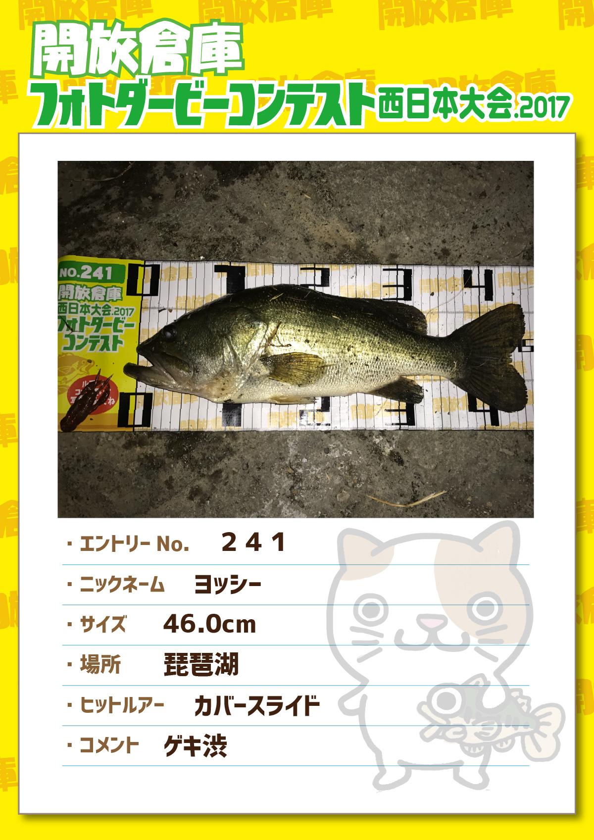 No.241 ヨッシー 46.0cm 琵琶湖 カバースライド ゲキ渋