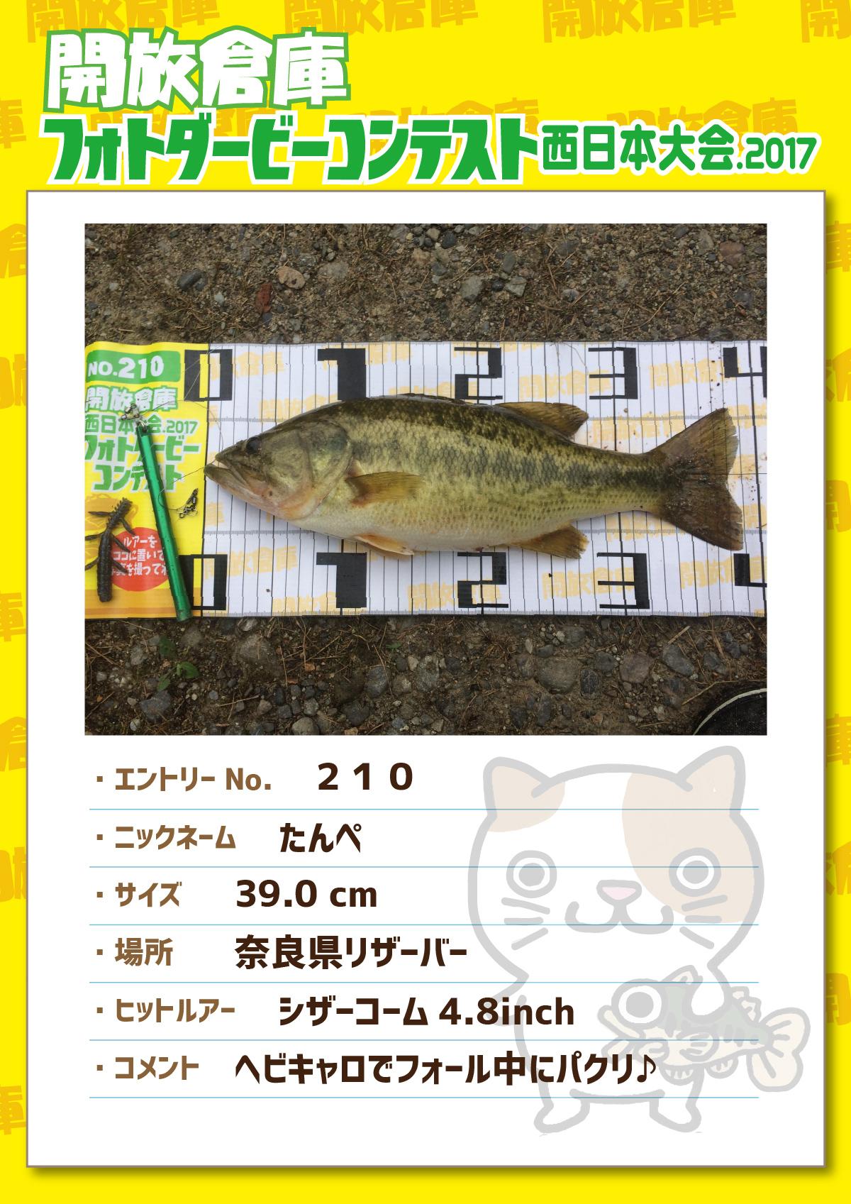 No.210 たんぺ 39.0cm 奈良県リザーバー シザーコーム4.8inch ヘビキャロでフォール中にパクリ♪