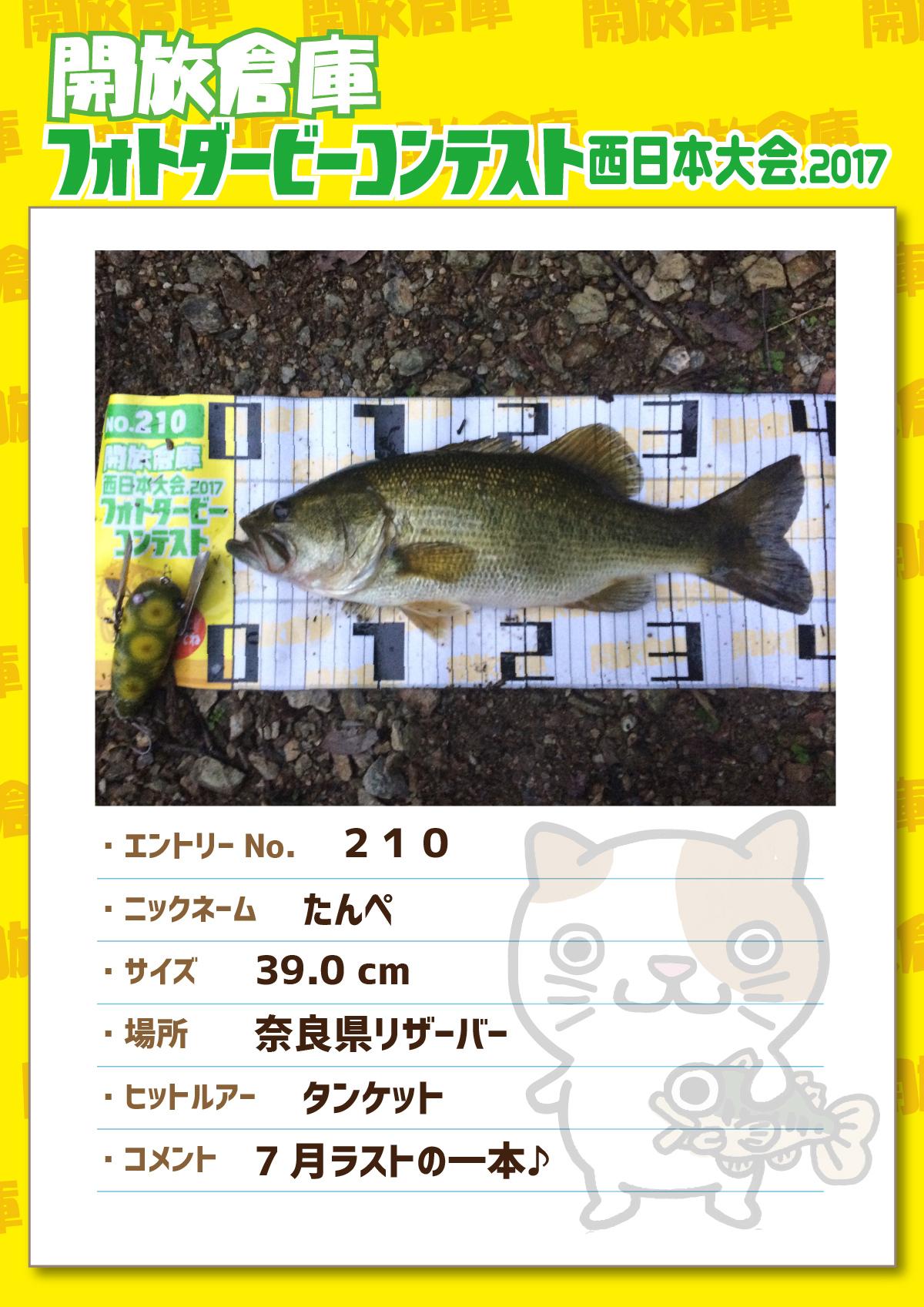 No.210 たんぺ 39.0cm 奈良県リザーバー タンケット 7月ラストの一本♪