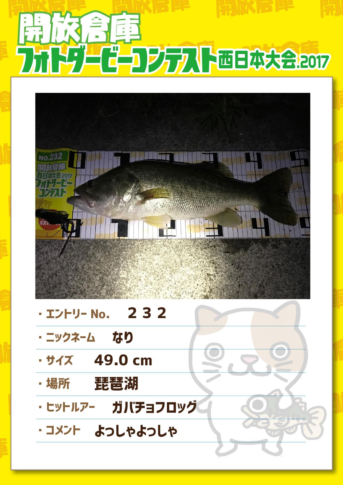 No.232 なり 49.0cm 琵琶湖 ガバチョフロッグ よっしゃよっしゃ