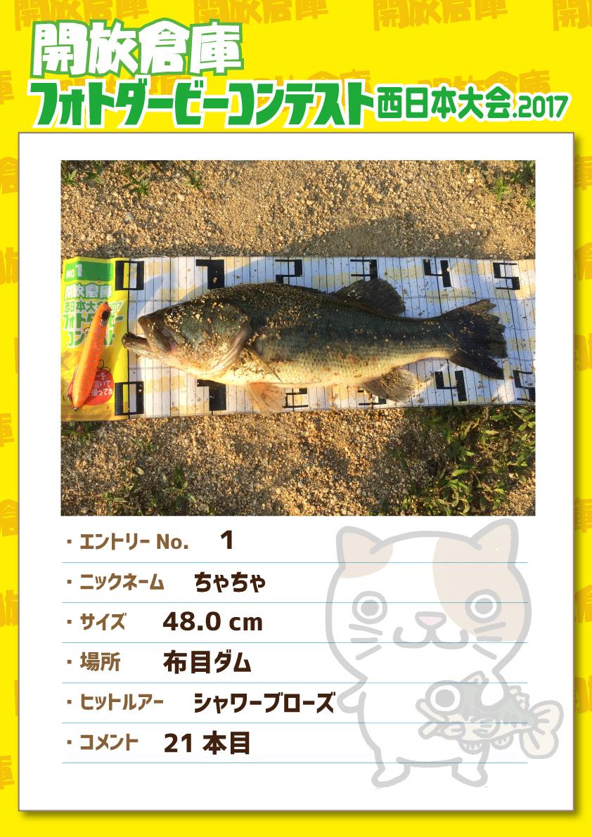 No.001 ちゃちゃ 48.0cm 布目ダム シャワーブローズ 21本目